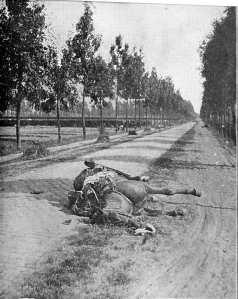 Après la charge des dragons allemands sur la chaussée de Haelen, un cheval tué abandonné avec son harnachement et l'étui de carabine de son cavalier