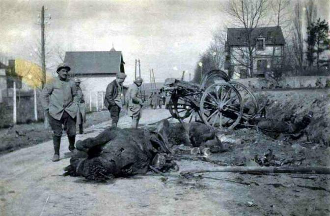 531/journal du16 janvier 1916: les animaux durant la guerre