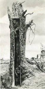 arbre_haute_def.-iloveimg-compressed_1