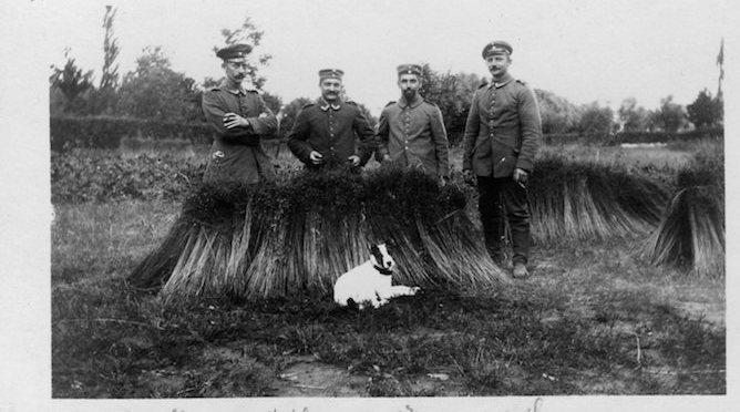 journal de la grande guerre 1914 1918 reims dans la