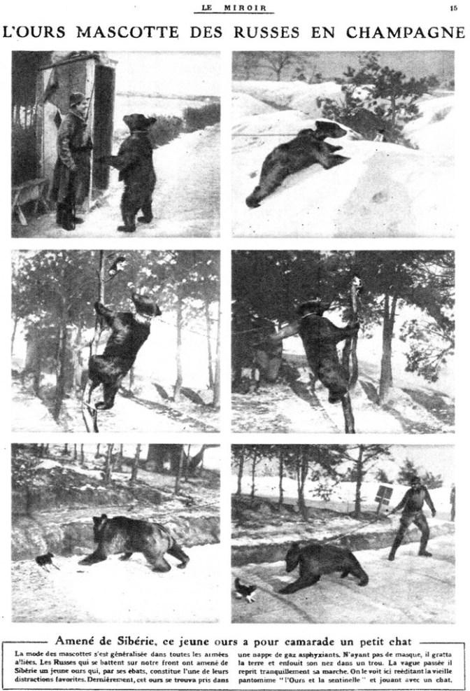 993/22 avril 1917: les mascottes des soldats russes en Champagne