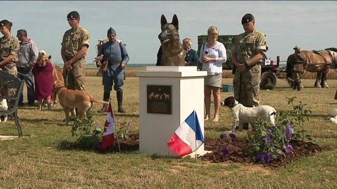 (vidéo)Un monument à Pozières en hommage aux animaux morts pendant la Grande Guerre