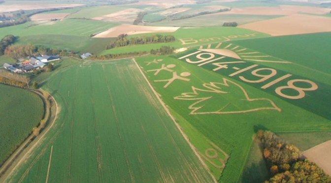 (vidéo) Dans les Ardennes, deux agriculteurs font des fresques géantes dans leurs champs