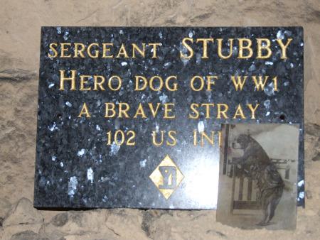 1356/20 avril 1918: Stubbs le chien de guerre le plus décoré