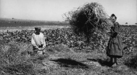 1570/19 novembre 1918: la tombe du « soldat inconnu », une idée rennaise !
